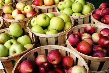 Apple Festival @ Peddlers Village